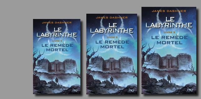 """Lectrice du mois, en novembre Agathe a lu """"Labyrinthe le remède mortel"""""""