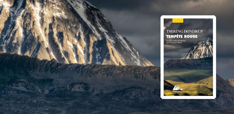 Le goût de l'interdit : l'épopée chinoise au Tibet
