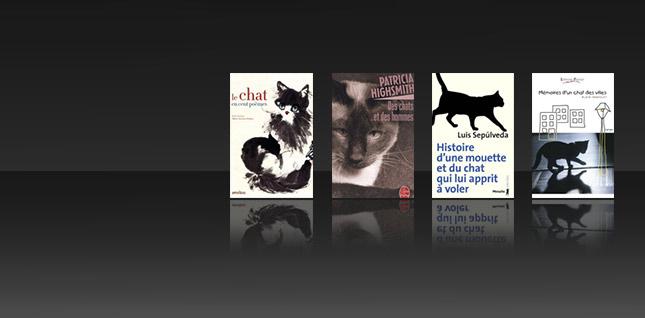Des chats entre les pages : des livres et des matous