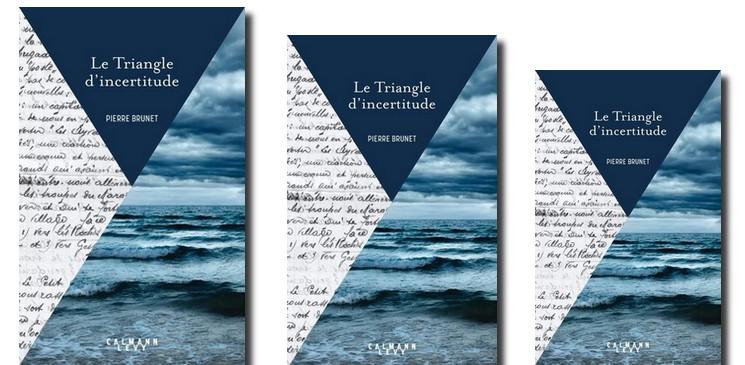 """""""Le Triangle d'incertitude"""" de Pierre Brunet, un roman nécessaire !"""