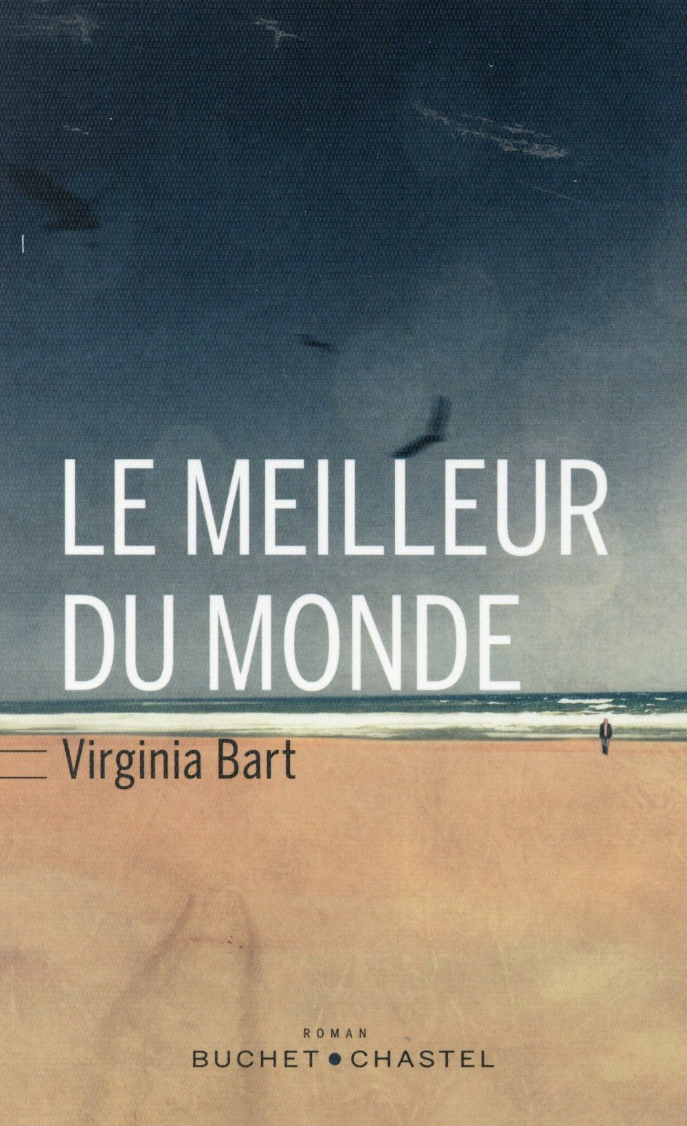 "La chronique #11 du Club des Explorateurs : ""Le meilleur du monde"" de Virginia Bart"
