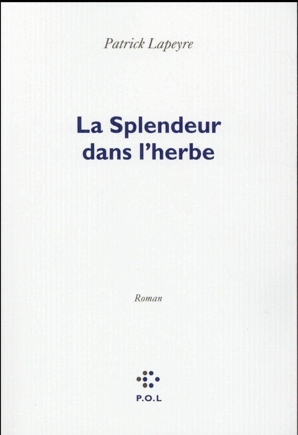 """#Interview :  Patrick Lapeyre nous parle de son dernier roman """"La Splendeur dans l'herbe"""""""