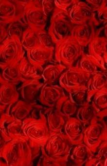 La Saint Valentin comme on l'aime, électrique !