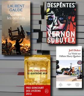 Les 20 romans que vous avez le plus aimé en 2015