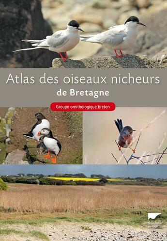 Couverture du livre « Atlas des oiseaux nicheurs de Bretagne » de Groupe Ornithologique Breton aux éditions Delachaux & Niestle