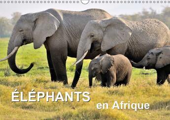 Couverture du livre « Les elephants d afrique sont i » de Feuerer Juergen aux éditions Calvendo