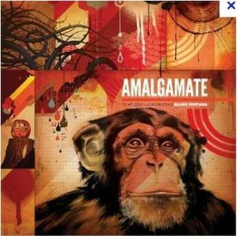 Couverture du livre « Amalgamate, the art design and exploration of Blaine Fontana » de Blaine Fontana aux éditions Gingko Press
