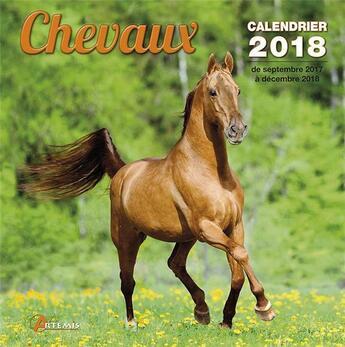 Couverture du livre « Chevaux (édition 2018) » de Collectif aux éditions Artemis