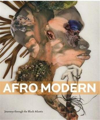 Couverture du livre « Afro Modern Journeys Through The Black Atlantic /Anglais » de Barson Tanya aux éditions Tate Gallery