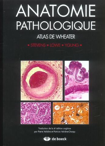 Couverture du livre « Anatomie pathologique » de Stevens aux éditions De Boeck Superieur