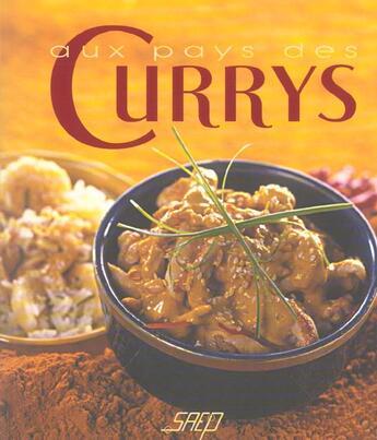 Couverture du livre « Aux Pays Des Currys » de Collectif aux éditions Saep