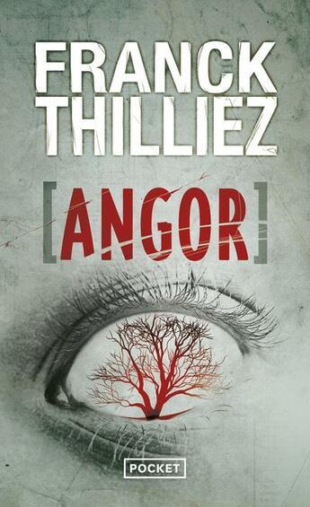 Couverture du livre « Angor » de Franck Thilliez aux éditions Pocket