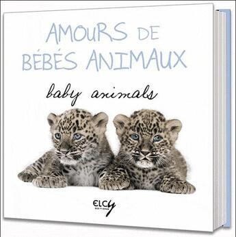 Couverture du livre « Amours de bébés animaux ; baby animals » de Collectif aux éditions Elcy