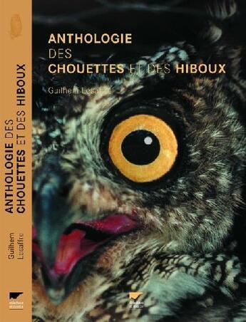 Couverture du livre « Anthologie Des Chouettes Et Des Hiboux » de Guilhem Lesaffre aux éditions Delachaux & Niestle