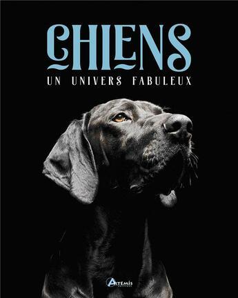 Couverture du livre « Chiens, un univers fabuleux » de Isabelle Collin aux éditions Artemis