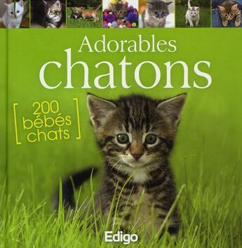 Couverture du livre « Adorables chatons ; 200 bébés chats » de Yann Belloir aux éditions Edigo