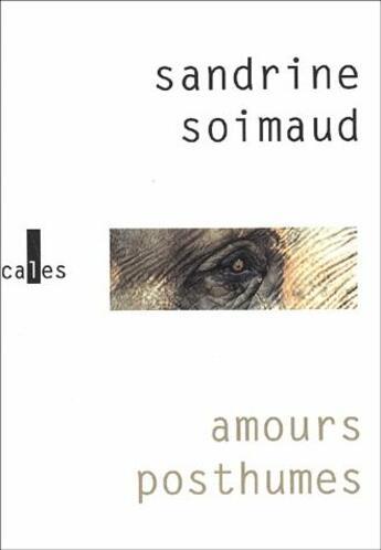 Couverture du livre « Amours posthumes » de Sandrine Soimaud aux éditions Verticales