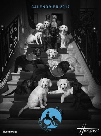 Couverture du livre « Calendrier mural handi'chiens (édition 2019) » de Collectif aux éditions Hugo Image