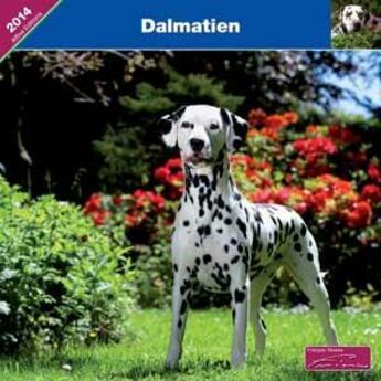 Couverture du livre « 2014 Dalmatien » de Collectif aux éditions Affixe
