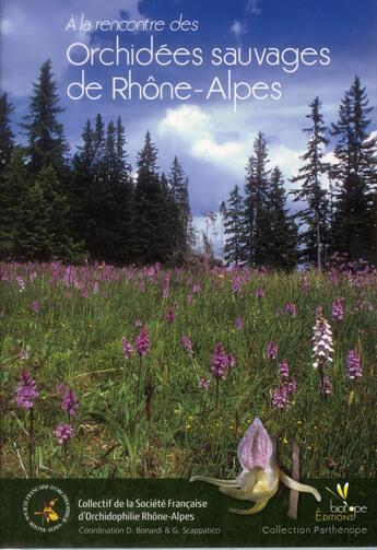 Couverture du livre « A la rencontre des orchidées sauvages de Rhône-Alpes » de Collectif aux éditions Biotope