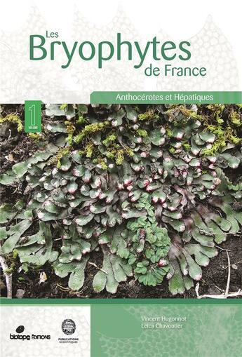 Couverture du livre « Les bryophytes de France t.1 : anthocérotes et hépatiques » de Vincent Hugonnot et Leica Chavoutier aux éditions Biotope