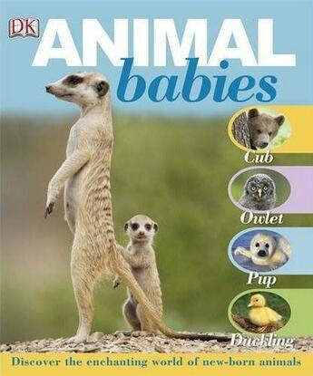 Couverture du livre « Animal babies » de Collectif aux éditions Dk Children