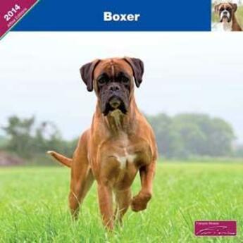 Couverture du livre « 2014 Boxer » de Collectif aux éditions Affixe