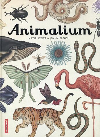 Couverture du livre « Animalium » de Jenny Broom et Katie Scott aux éditions Autrement