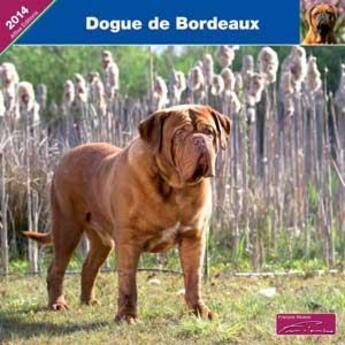 Couverture du livre « 2014 Dogue De Bordeaux » de Collectif aux éditions Affixe