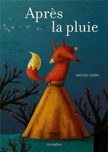 Couverture du livre « Après la pluie » de Miguel Cerro aux éditions Circonflexe