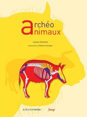 Couverture du livre « Archéo animaux » de Helene Georges et Lamys Hachem aux éditions Actes Sud Junior