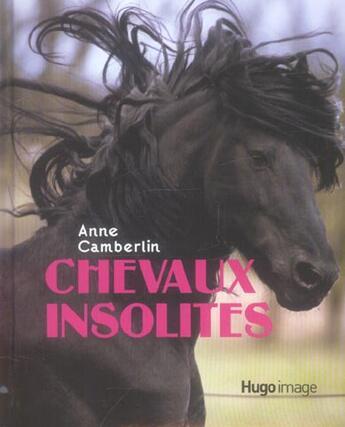 Couverture du livre « Chevaux insolites » de Anne Camberlin aux éditions Hugo