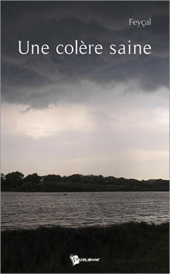 Couverture du livre « Une colère saine » de Feycal aux éditions Publibook