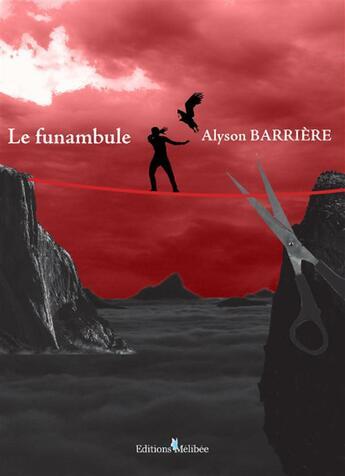 Couverture du livre « Le funambule » de Alyson Barriere aux éditions Melibee