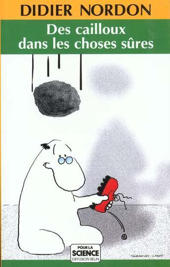 Couverture du livre « Des cailloux dans les choses sures » de Didier Nordon aux éditions Pour La Science