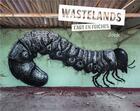 Couverture du livre « Wastelands ; l'art en friche » de Jonathan Jonk aux éditions Alternatives