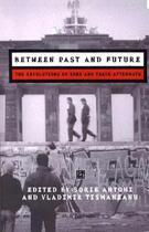 Couverture du livre « Between Past and Future » de Sorin Antohi aux éditions Central European University Press