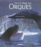 Couverture du livre « Dans le sillage des orques » de Sylvestre Jean-Pierr aux éditions Kameleo