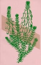 Couverture du livre « Bécon-les-Bruyères » de Emmanuel Bove aux éditions Cent Pages