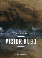 Couverture du livre « Victor Hugo, l'homme océan » de Marie-Laure Prevost aux éditions Bibliotheque Nationale De France