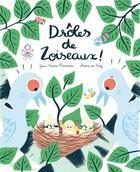 Couverture du livre « Drôles de zoiseaux » de Laure Du Fay et Jean-Pierre Raveneau aux éditions Amaterra