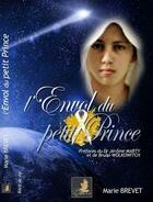 Couverture du livre « L'envol du petit prince » de Marie Brevet aux éditions Le Faucon D'or