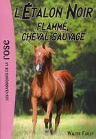 Couverture du livre « L'étalon noir T.10 ; Flamme, cheval sauvage » de Walter Farley et Steven Farley aux éditions Hachette Jeunesse