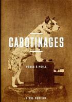 Couverture du livre « Cabotinages ; nos amis les bêtes » de Sylvie Aubenas aux éditions Bibliotheque Nationale De France