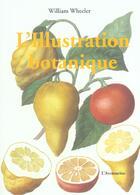 Couverture du livre « Illustration Botanique » de William Wheeler aux éditions Parangon