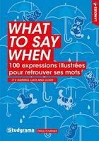 Couverture du livre « What to say when » de Emilie Fournier aux éditions Studyrama