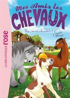 Couverture du livre « Mes amis les chevaux T.31 ; un sacré chantier ! » de Sophie Thalmann aux éditions Hachette Jeunesse