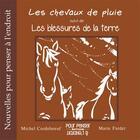 Couverture du livre « Les chevaux de pluie » de Michel Cordeboeuf aux éditions Pour Penser A L'endroit