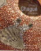 Couverture du livre « Thiébaut Chagué, itinérance » de Jean-Pierre Thibaudat et Tanya Harrod aux éditions Invenit