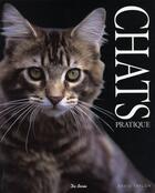 Couverture du livre « Chats pratique » de David Taylor aux éditions De Boree